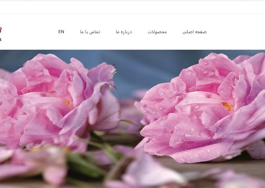 طراحی سایت ایران ترگل