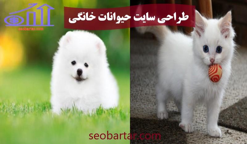 طراحی سایت حیوانات خانگی